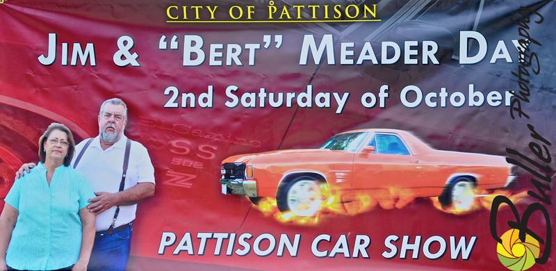 2009 - Pattison Car Show