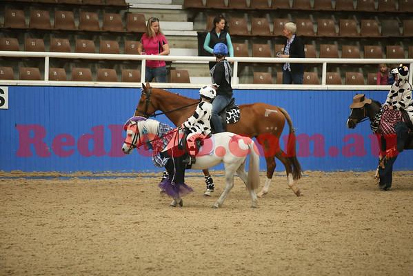 2014 08 23 PCAWA State Dressage Champs Musical Ride 2 Murray Bootskootin Barn Dance
