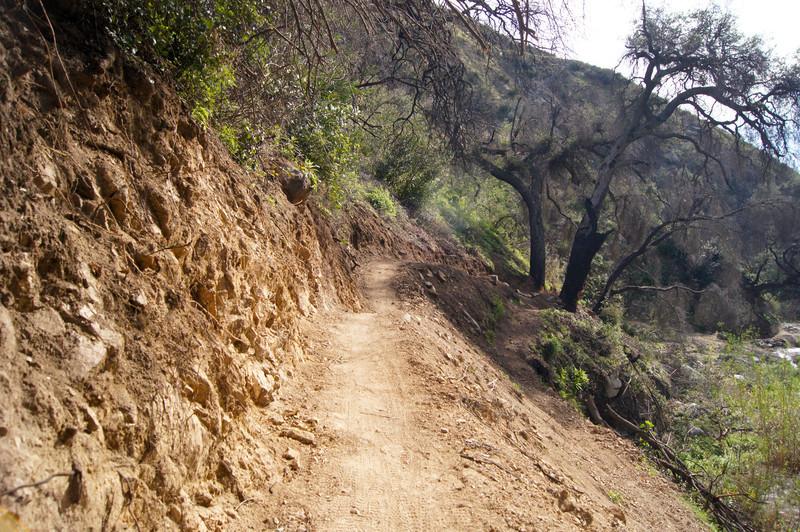 201201291613-El Prieto Trailwork.jpg