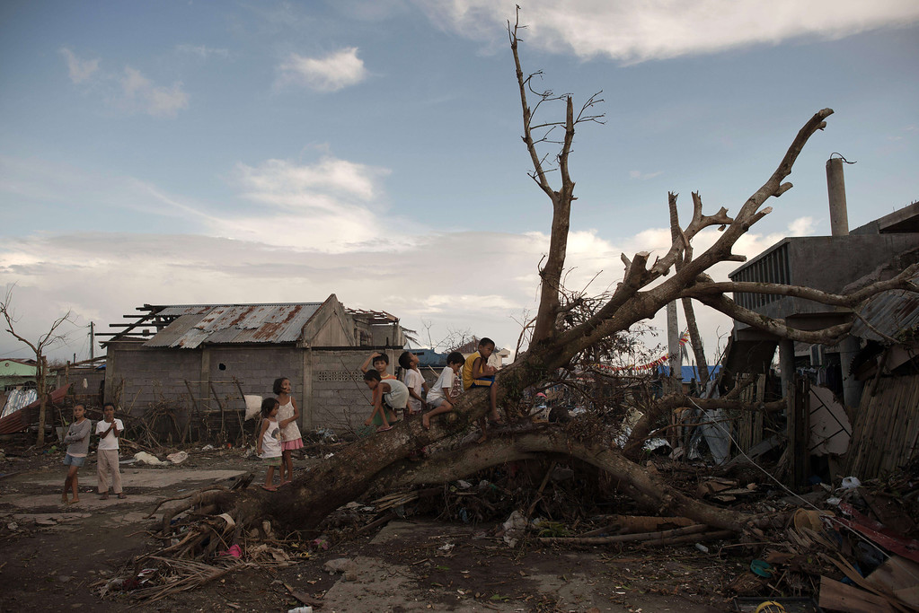 . Young typhoon survivors play on a fallen tree outside their destroyed homes in Palo on November 21, 2013.  AFP PHOTO/ Nicolas  ASFOURI/AFP/Getty Images