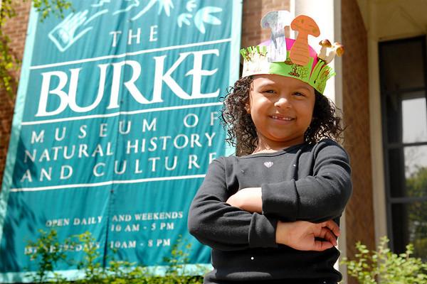 Mushroom Maynia! @ the Burke Museum, 2008