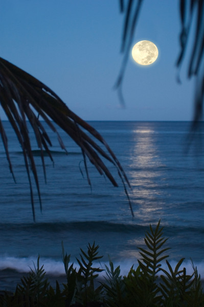 Full Moon rising over Kaunala Beach on the North Shore of O'ahu, Hawai'i  November 5, 2006