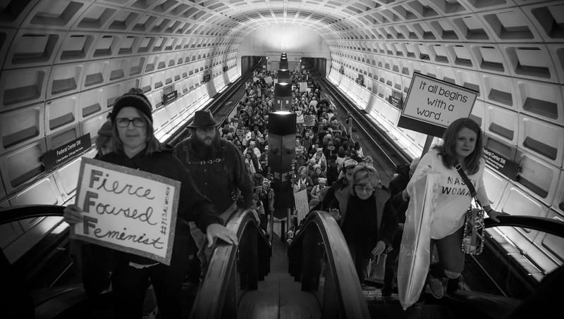 Women's March DC, 2017