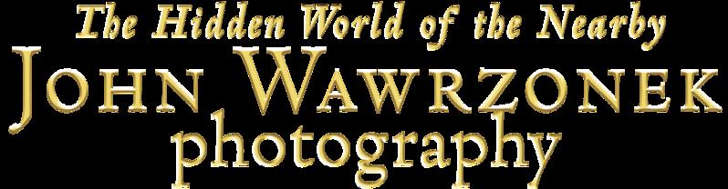 JOHN WAWRZONEK HWNB PHPTPGRAPHY BRIGHTGOLD.png