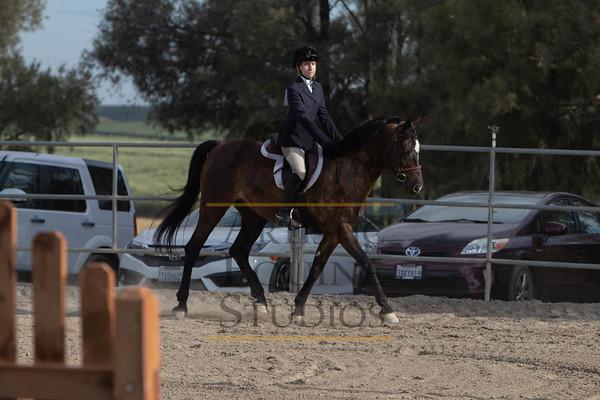 Rider 245