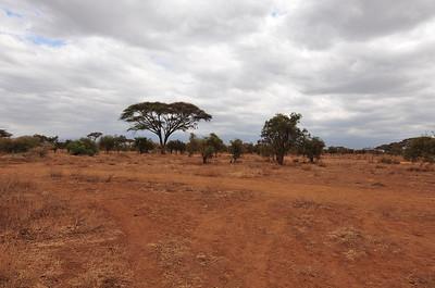 Landscapes of Africa