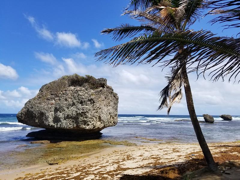 Barbados (33).jpg
