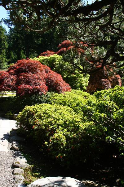 Portland Japanese Garden 6-3-11  1790.jpg