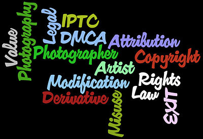 Copyright, DMCA graphic by NSL Photography