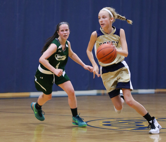 Girls AAU State Champs May 2016-7.jpg