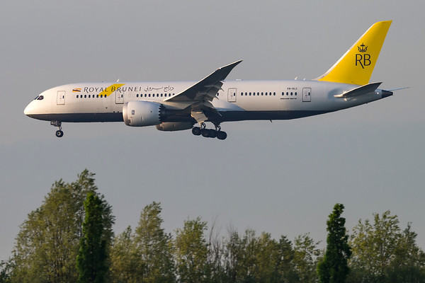 V8-DLC - Boeing 787-8 Dreamliner
