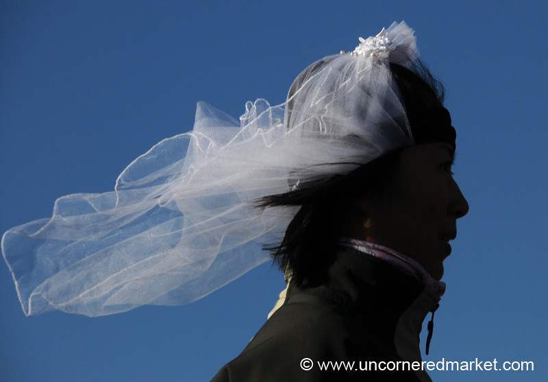 It's Like Wind on Your Wedding Day - Antarctica
