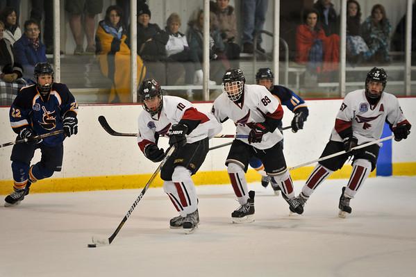 Chase Hockey January 2014