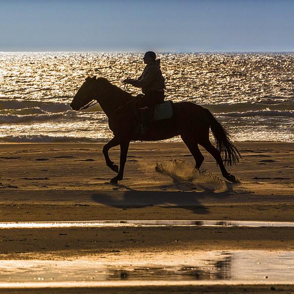 Horseback Silhouette