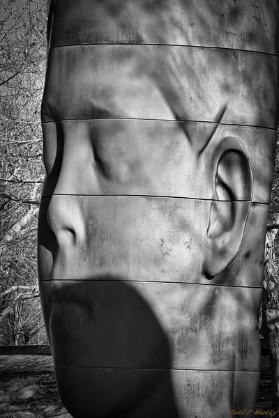 Statue Shadows