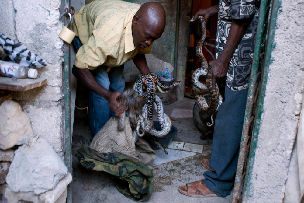 . In this Jan. 27, 2013 photo, an assistant to snake handler Saintilus Resilus prepares to wash snakes before using them in pre-Lenten Carnival performances in Petionville, Haiti. Resilus is one of millions of people scrambling to get by in a country where the unemployment rate hovers around 60 percent and most get by on $2 a day. Resilus has used snakes and other animals to earn a little money since at least 1974. (AP Photo/Dieu Nalio Chery)