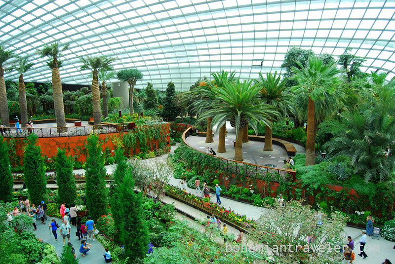 inside the flower dome at Gardens by the Bay.jpg