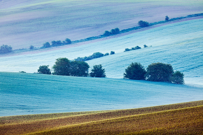 Rolling landscape of  South Moravia in the morning
