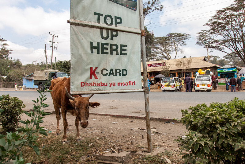 2013-Kenya2013-0718-0146.jpg