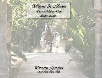 Wayne & Marisa - Our Wedding Album