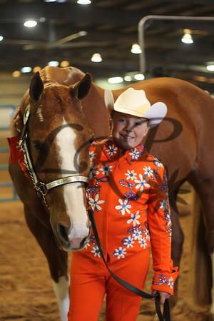 Oklahoma Paint Horse