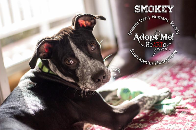 Smokey1.jpg