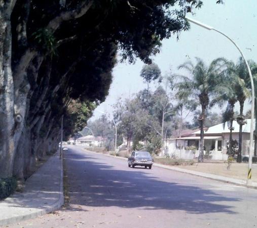 Rua das mangueiras