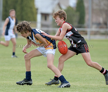 Junior Colts 2019 - Round 7 v Padthaway-Lucindale