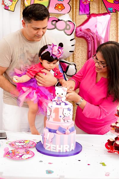 Paone Photography - Zehra's 1st Birthday-1138.jpg