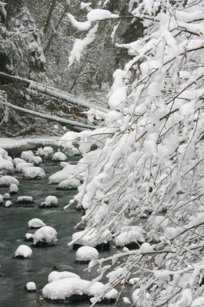 winter 2013-0302.jpg
