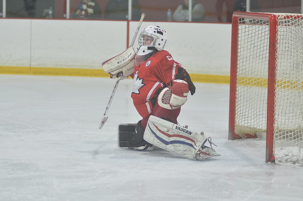 09 Silver - Woolwich Wildcats