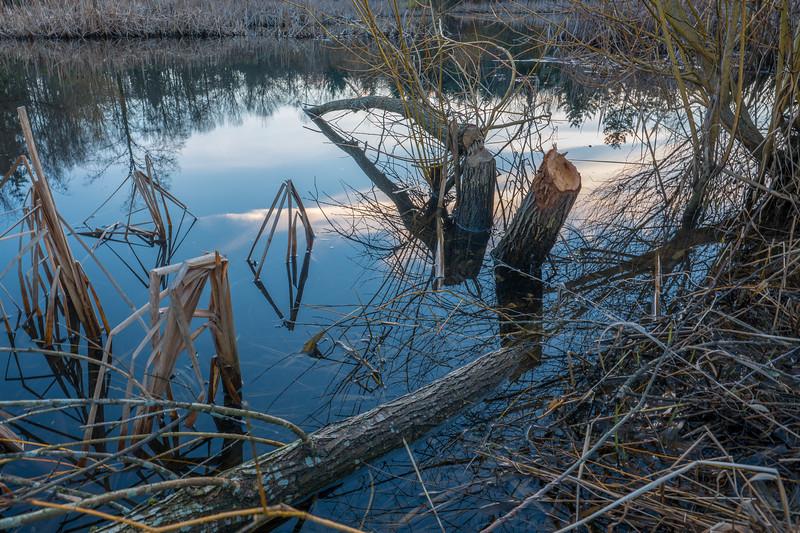 Beaver Works