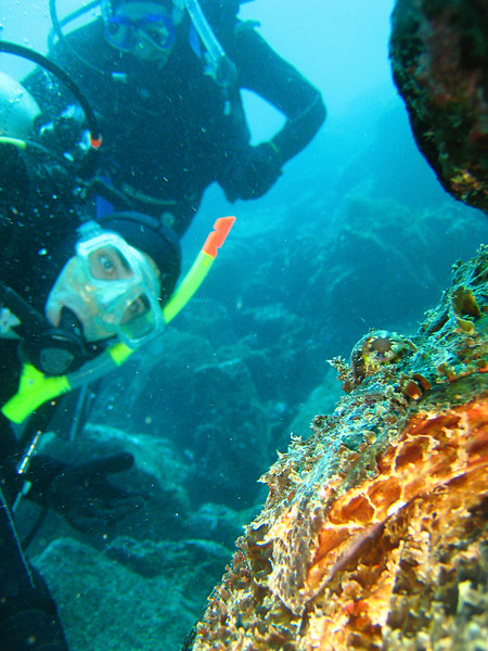 Diving in the Galapagos (308 of 392)