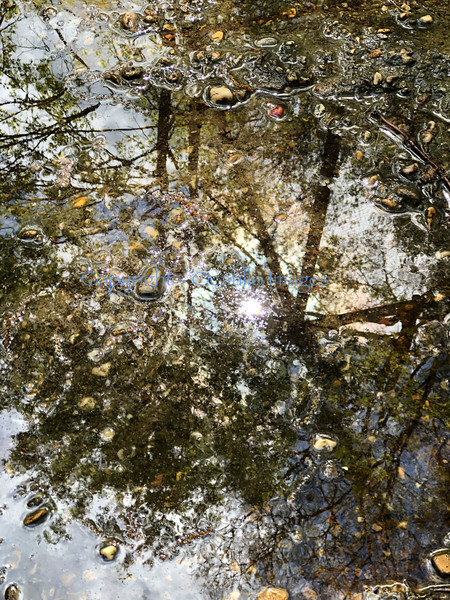 Sky puddle.jpg