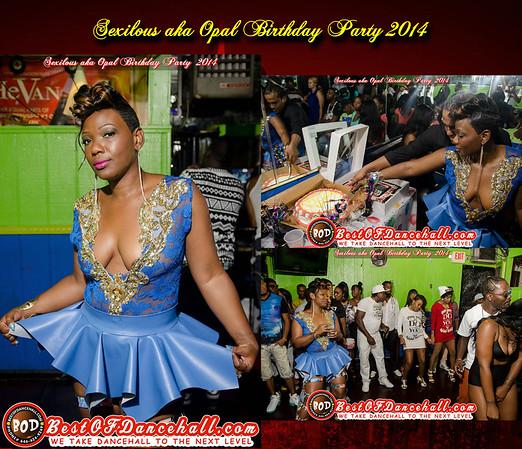 7-26-2014-BRONX-Sexilous aka Opal Birthday Party 2014