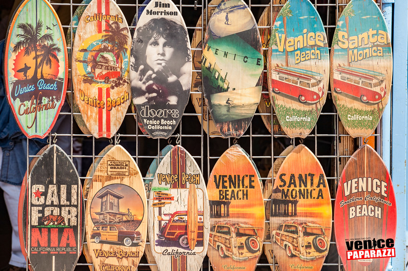 Venice Beach Fun-354.jpg