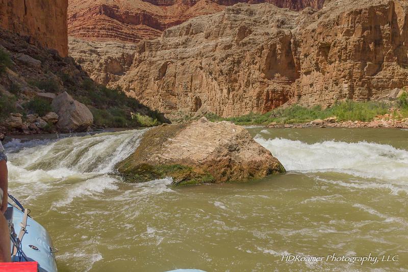 Grand-Canyon-2019-07-160.jpg
