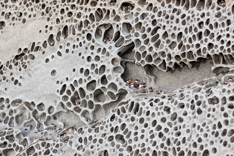 Tafoni patterns (carved sandstone) Bean Hollow State Beach, California 1401M-SP5