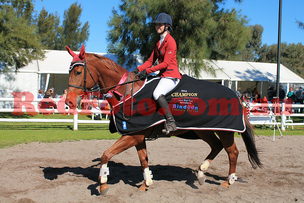 2014 08 03 Swan River ShowJumping Club Champions