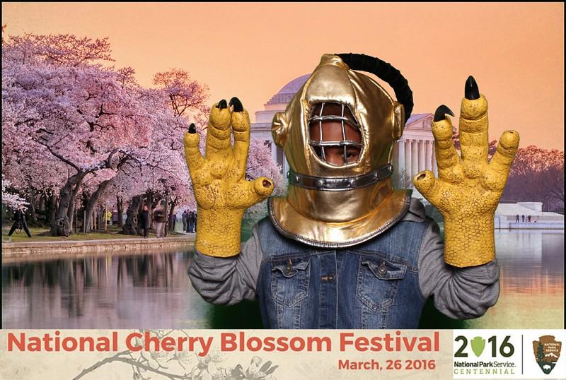 Boothie-NPS-CherryBlossom- (289).jpg