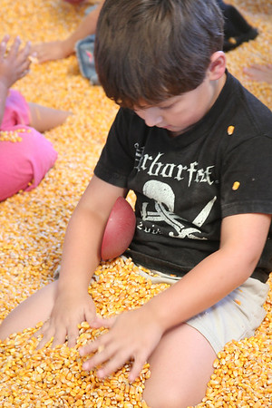 State Fair of Virginia 2007