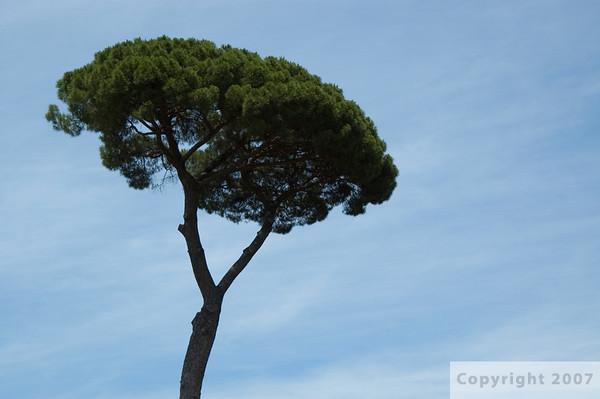 1. Rome, Italy - Part I