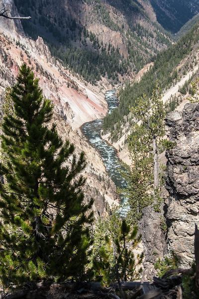 Yellowstone-9008.jpg