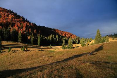 Padish High Plains Autumn — Pádis-fennsík ősszel
