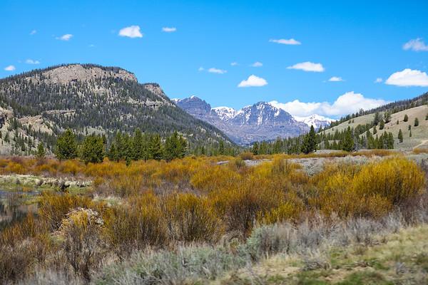 Wiggins Fork Landscapes