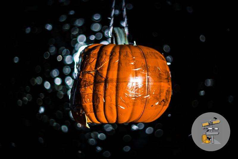 PumpkinHoller-2020-JK-1896.jpg