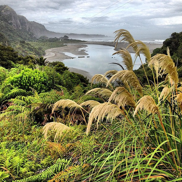 West coastal dreamscape, loving the physical beauty of this part of New Zealand's South Island