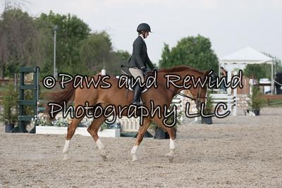 Children's Pony/Horse/Adult Hunter Under Saddle