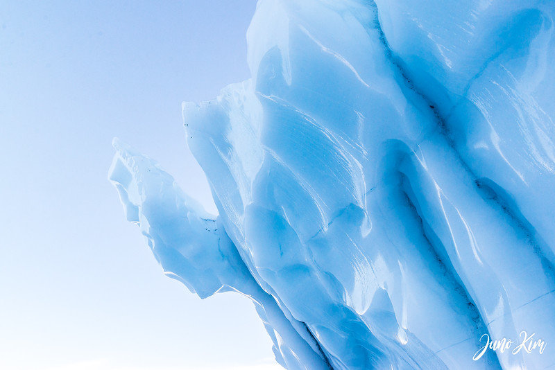 Matanuska Glacier_Karen-6105661-Juno Kim.jpg