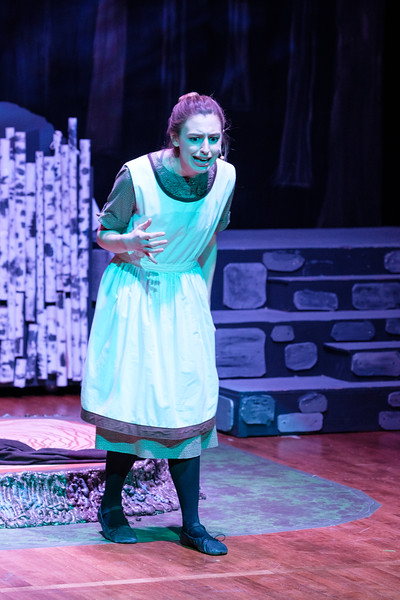 2018-03 Into the Woods Performance 0804.jpg